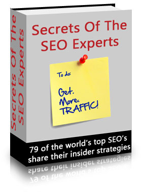Secrets Of The SEO Experts